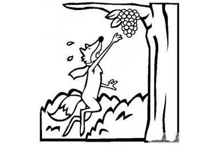 伊索寓言简笔画 狐狸和葡萄简笔画图片