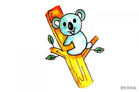 树袋熊简笔画怎么画