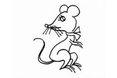 漂亮的小老鼠简笔画