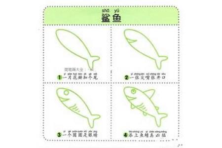 幼儿动物简笔画教程之鲨鱼