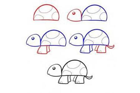 简笔画教程 小乌龟简笔画步骤图
