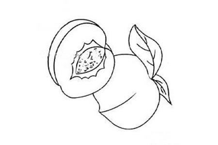桃子简笔画图片