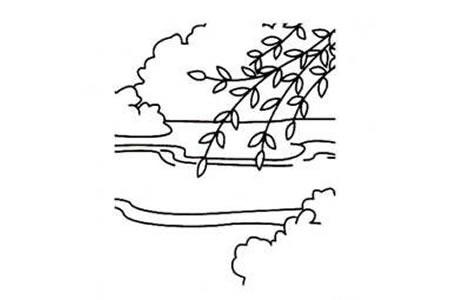 小学生柳树简笔画图片