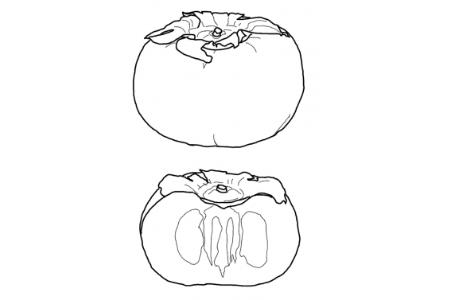 如何画柿子