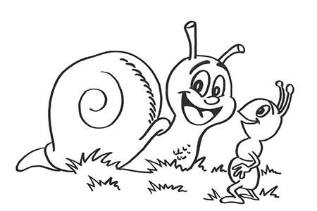 蜗牛和蚂蚁