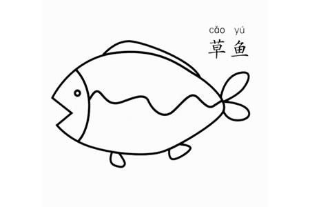 草鱼怎么画