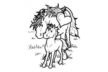 马妈妈和小马