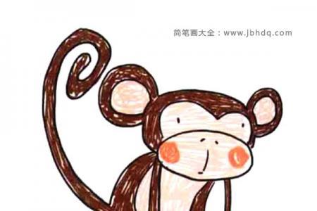 陆地野生动物 猴子