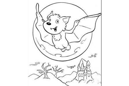 夜晚的小蝙蝠