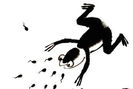 儿童国画基础教程23 青蛙