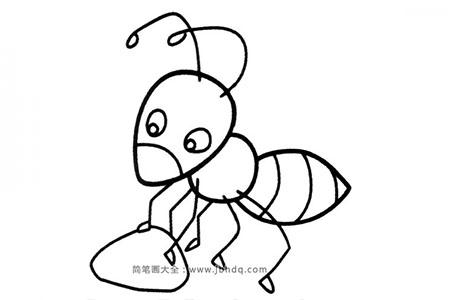 勤劳的蚂蚁