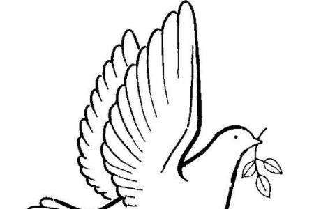和平鸽怎么画鸽子简笔画图片大全