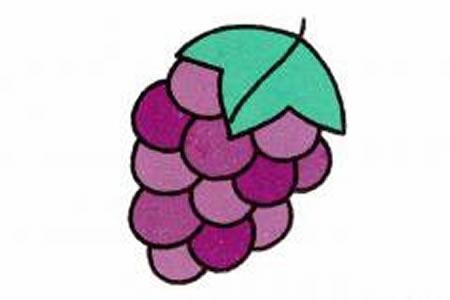葡萄简笔画画法