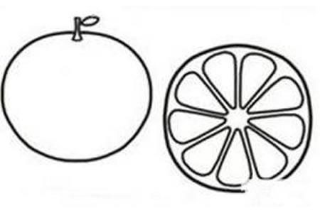 橙子简笔画图片