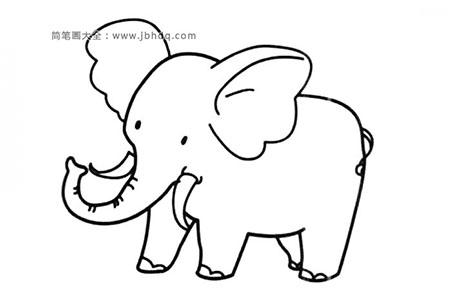 可爱的小象简笔画