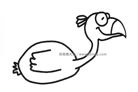 卡通火烈鸟简笔画图片