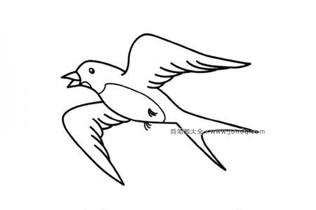 飞翔的燕子简笔画图片