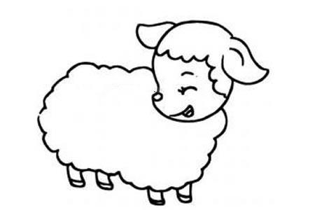 绵羊简笔画图片