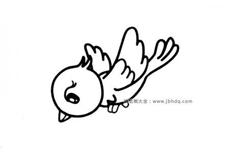 两张可爱的小鸟简笔画图片