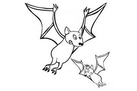 动物简笔画 蝙蝠简笔画图片