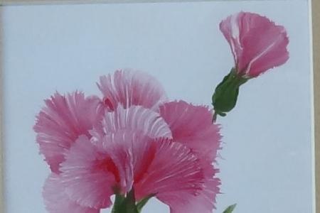 康乃馨水粉画图片 母亲节送给妈妈的画作品分享