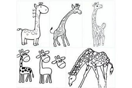 几种长颈鹿的简单画法