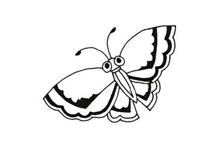 简单的蝴蝶简笔画图片大全