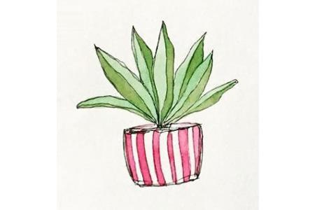 27个漂亮的小盆栽手帐插画
