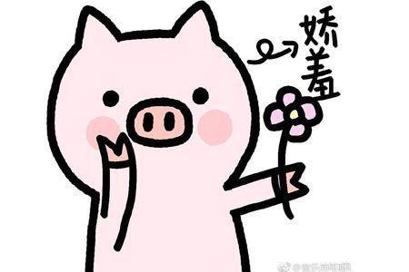 猪猪的精致生活表情包2