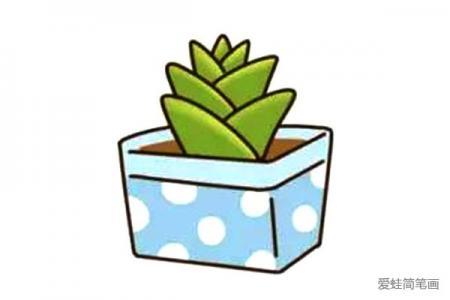 漂亮的多肉植物简笔画10