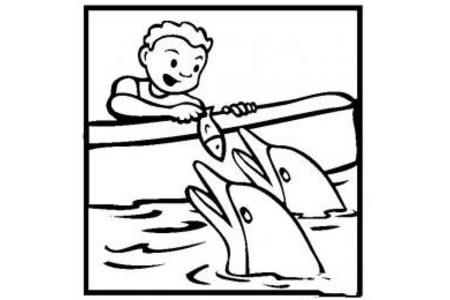 游乐项目简笔画 喂海豚简笔画图片
