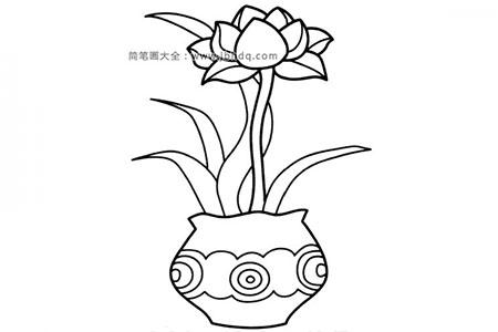 盆栽花朵简笔画图片