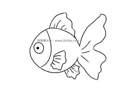 可爱的金鱼简笔画