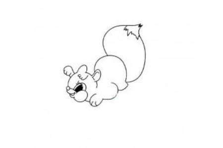 动物简笔画大全 卡通松鼠简笔画