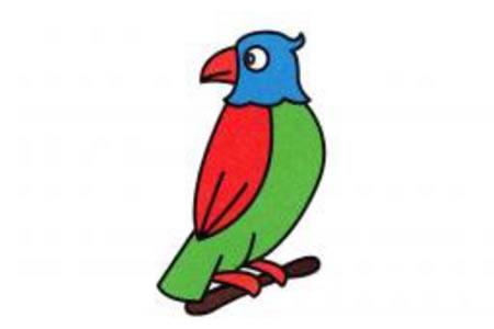 小鹦鹉的简笔画画法
