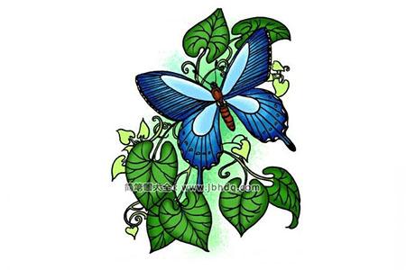 春天的蝴蝶