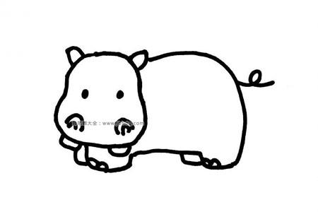 河马的简笔画图片