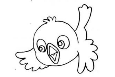 空中的小鸟