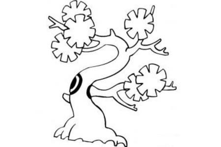 大树简笔画 可爱银杏树简笔画图片