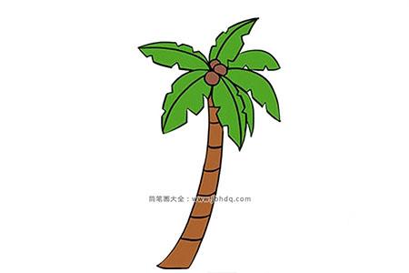 棕榈树简笔画图片