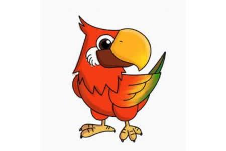 鹦鹉的简笔画画法