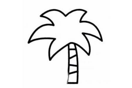 关于椰子树的简笔画图片