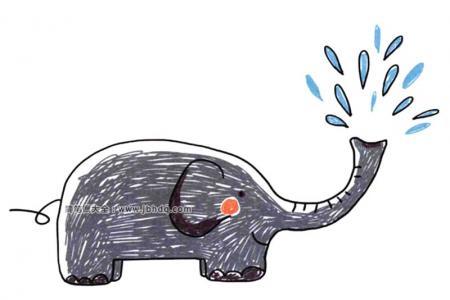 喷水玩耍的大象