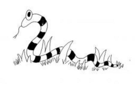 蛇的简笔画大全