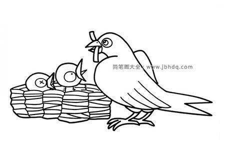 燕子妈妈给小燕子喂食