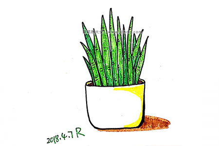 漂亮的小盆栽简笔画