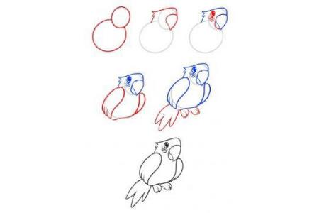 简笔画教程 鹦鹉简笔画画法