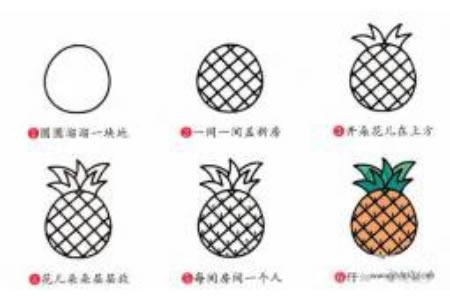 简笔画教程大全 菠萝简笔画步骤图