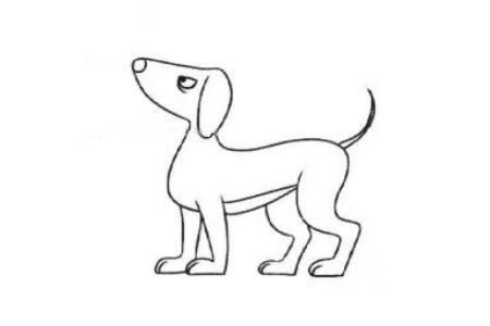 散步的小狗简笔画