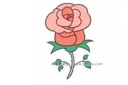 简笔画教程|粉色的玫瑰花